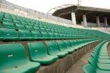 [شنس] [فكتوري بريس] بلاستيكيّة ملعب مدرّج كرة قدم [سبورتس] كرسي تثبيت كرسي تثبيت [بك ست]