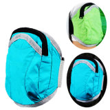 Esporte universal Armbag de ciclagem de funcionamento do saco do malote do pulso dos acessórios do telefone