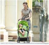 Der meiste populäre Pockit Baby-Spaziergänger