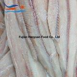 Frutti di mare dalla Cina, raccordo dello squalo blu