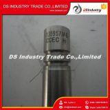 Válvula de admissão de peças de reposição do motor Dcec Nt855 de alta qualidade 135957
