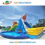 Faites glisser le requin Jouets gonflables géants avec piscine