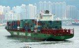 Logistica del mare di merito con l'agente economico della Cina di tassi a Singapore