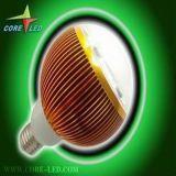 9W LEDの球根ライト暖かい白