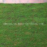 Plantes artificielles à haute imitation écologique avec muqueuse / herbe fausse