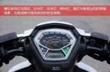 [1200و] [وورلد كب] درّاجة ناريّة كهربائيّة