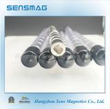 Magneten van de Ring van NdFeB van het Neodymium van de vervaardiging N52 de Permanente
