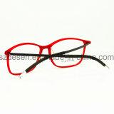 도매에 의하여 주문을 받아서 만들어지는 플라스틱 강철 광학 프레임 또는 Eyewear 또는 확대경