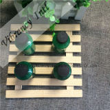 High Quality Hotel 40ml Green Bottle Shampooing jetable