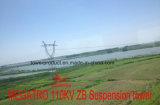 Torretta della sospensione di Megatro 110kv Zb (figura orizzontale di configurazione)