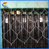 (PVC/горячий/электрическое) ячеистая сеть Gabion (6*8 8*10)