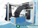 Macchina per cucire del bordo Pl-Automatico (PL-AESM)