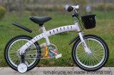Populäres Kursteilnehmer-Fahrrad-Kind-Fahrrad für junge Kerle
