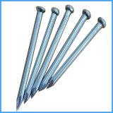 Tous les types de béton en acier inoxydable pour la construction d'ongles