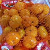 Fresh Nanfeng Baby Mandarin