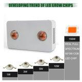 O diodo emissor de luz barato da venda por atacado de Shenzhen cresce luzes com espetro cheio