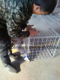 Коробка Gabion провода металла камней
