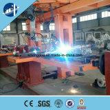 OEM de modèle personnalisé par élévateur de plate-forme d'élévateur de construction/matériau de construction