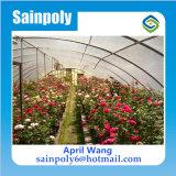販売のための低価格のプラスチック農業の温室