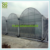 Chambre verte de polycarbonate de Multispan