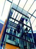 세륨 & Cutr 증명서를 가진 유리제 엘리베이터