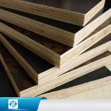 O preto/película de Brown/cimento da construção enfrentou a folha da madeira compensada