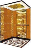 イタリアGmvシステム(RLS-203)が付いているホーム油圧別荘のエレベーター