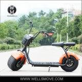 """""""trotinette"""" elétrico adulto da bicicleta 2017 elétricos elétricos gordos da motocicleta do pneu de Citycoco do preço de grosso W 2000"""