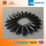 Special Shape Epoxy Magnet with Pass The Ts 164949