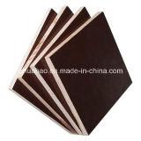 Bois et contreplaqué avec colle métallique de film brun pour les constructions