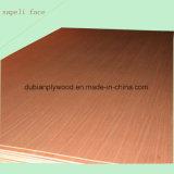 Contre-plaqué de fantaisie de pente du faisceau BB/CC de peuplier pour des meubles