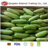 Zucchini verde de um quarto Frozen com alta qualidade