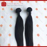 自然なカラー加工されていないインドのバージンの毛の束