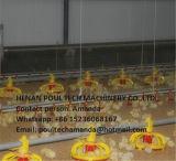 Grill en de Kleine Bevloering die van de Kip Systeem voor de Landbouw van het Gevogelte opheffen