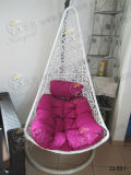 Стул качания, напольная мебель, мебель сада (JJ-531)