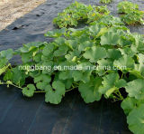 Boa qualidade de tapete de controle de plantas daninhas em plástico agrícola