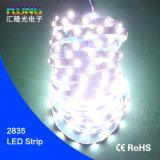 유연한 72LED/M 6mm 넓은 14.4W 2835 LED 지구는 비 방수 처리한다
