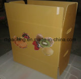 Twinwall PP Box, Carton en plastique, Coroplast Box Fabricant / PP Fruit Box / Folding Box