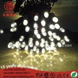 La decoración de la luz de la cadena de LED para exteriores Project