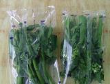 식물성 베개 유형 포장기 (DXD-620)