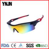 2017년 중국 제조자 옥외 UV400 스포츠 남자 일요일 유리