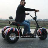 رخيصة مدينة جوز هند كهربائيّة درّاجة ناريّة [سكوتر] مع [1000و] محرّك