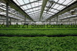Aço de estrutura de carbono para casa pré-fabricada com design e instalação