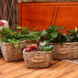(BC-WF1024) hecho a mano puro natural del sauce cesta de la flor
