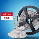 6500k 백색 60LEDs/M LED 빛 지구 5050
