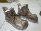 Cepillo de señora en piel color que restaura las maneras antiguas británica de ocio Espumantes Bottoms botas cortas