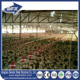 좋은 품질 무역 보험 닭 가금 농장 헛간