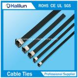 O fechamento revestido PVC da cinta plástica do Asa-Fechamento do aço inoxidável aperta