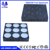 LED는 가벼운 제조 LED를 증가한다 고성능 LED가 빛을 증가하는 가벼운 600W를 증가한다