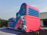De nieuwe Opblaasbare Dia van Gaint van de Fabriek met Populair Karton voor Verkoop
